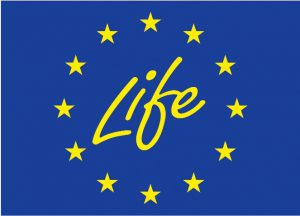life_logo_official